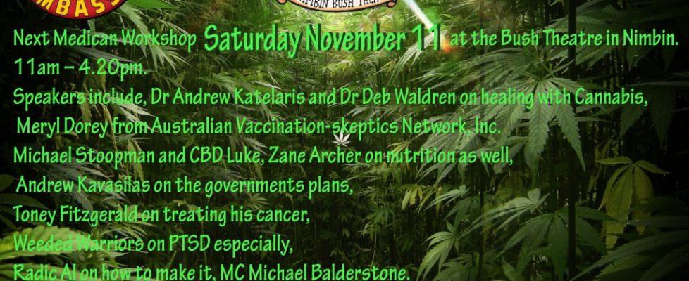 Nimbin Medican Workshop 11 November